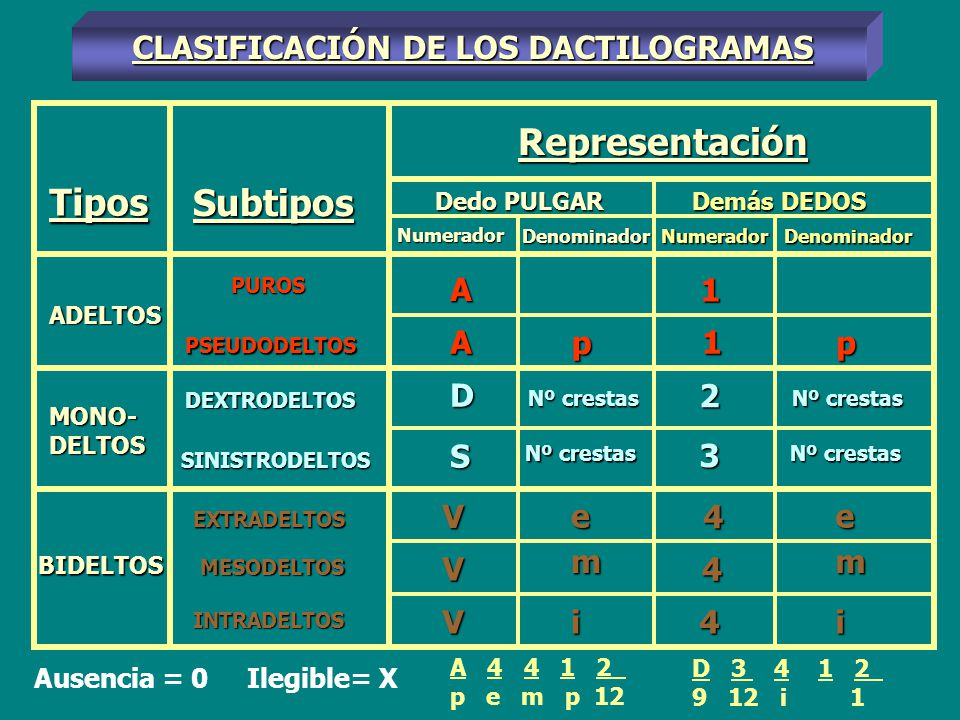 Representación Tipos Subtipos CLASIFICACIÓN DE LOS DACTILOGRAMAS A 1 A