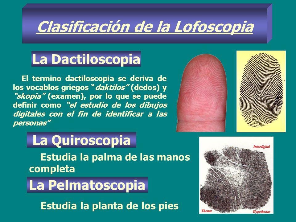 Clasificación de la Lofoscopia