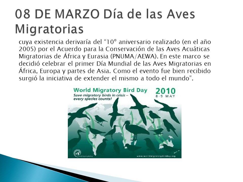 08 DE MARZO Día de las Aves Migratorias