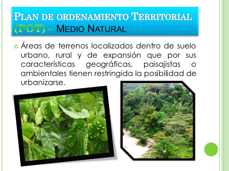 Plan de ordenamiento Territorial (POT) – Medio Natural