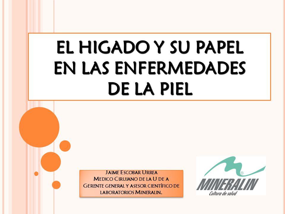 EL HIGADO Y SU PAPEL EN LAS ENFERMEDADES DE LA PIEL