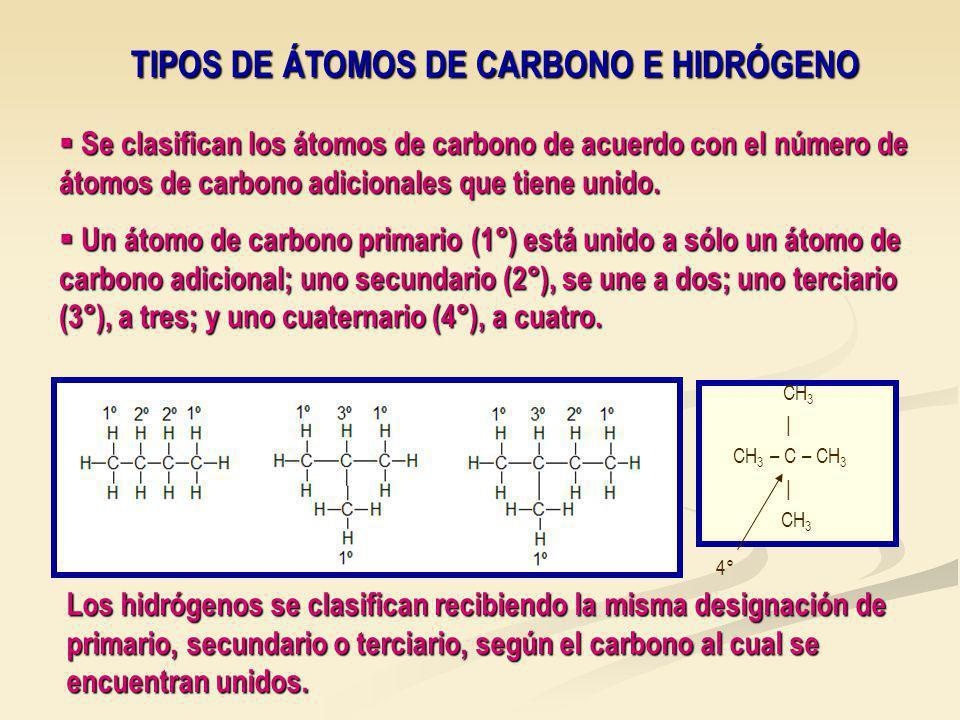 TIPOS DE ÁTOMOS DE CARBONO E HIDRÓGENO