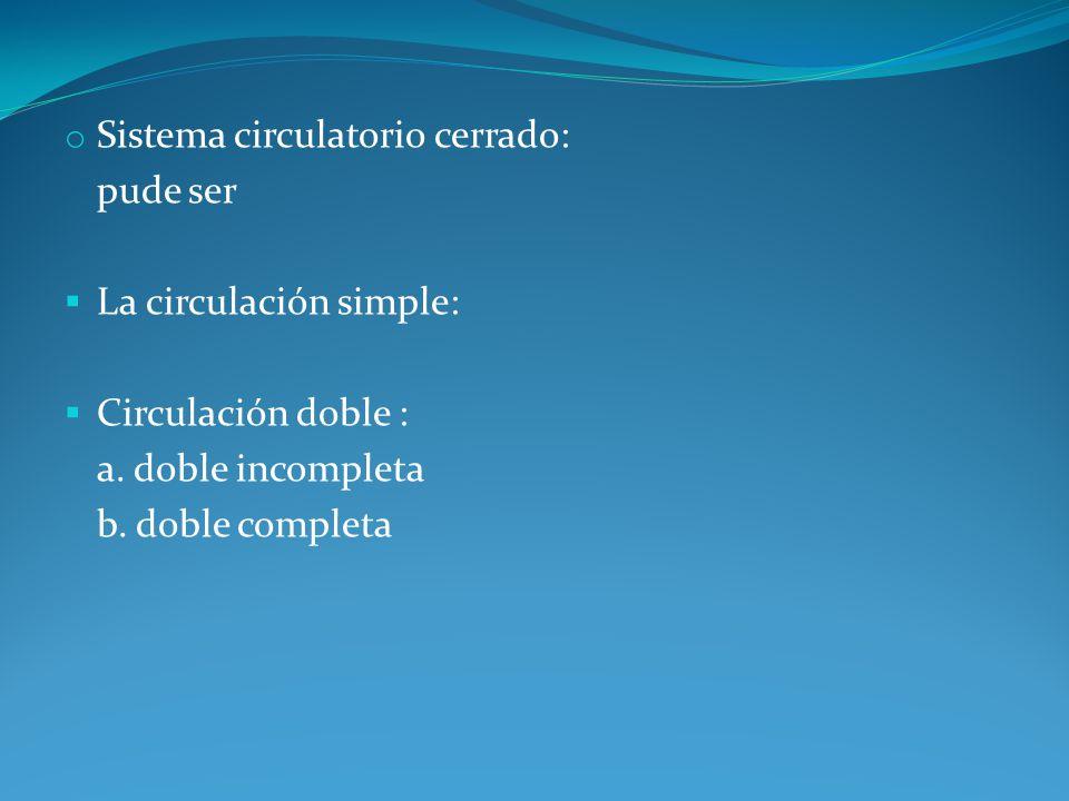 Sistema circulatorio cerrado: