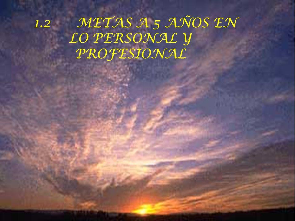 1.2 METAS A 5 AÑOS EN LO PERSONAL Y PROFESIONAL