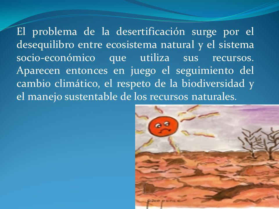 El problema de la desertificación surge por el desequilibro entre ecosistema natural y el sistema socio-económico que utiliza sus recursos.