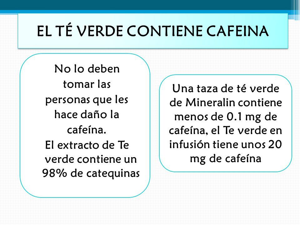 EL TÉ VERDE CONTIENE CAFEINA