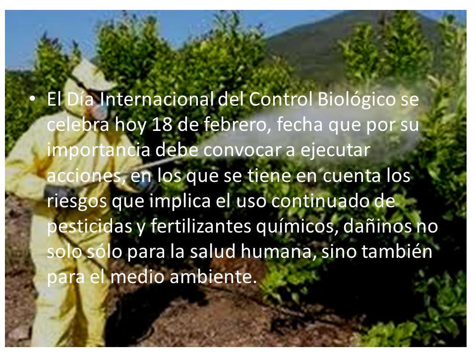 El Día Internacional del Control Biológico se celebra hoy 18 de febrero, fecha que por su importancia debe convocar a ejecutar acciones, en los que se tiene en cuenta los riesgos que implica el uso continuado de pesticidas y fertilizantes químicos, dañinos no solo sólo para la salud humana, sino también para el medio ambiente.