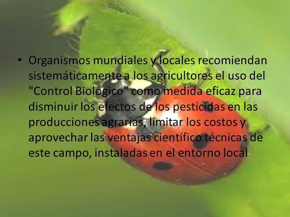 Organismos mundiales y locales recomiendan sistemáticamente a los agricultores el uso del Control Biológico como medida eficaz para disminuir los efectos de los pesticidas en las producciones agrarias, limitar los costos y aprovechar las ventajas científico técnicas de este campo, instaladas en el entorno local