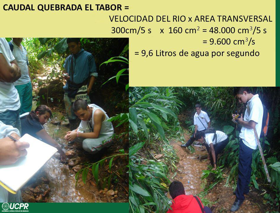 CAUDAL QUEBRADA EL TABOR = VELOCIDAD DEL RIO x AREA TRANSVERSAL 300cm/5 s x 160 cm2 = 48.000 cm3/5 s = 9.600 cm3/s = 9,6 Litros de agua por segundo