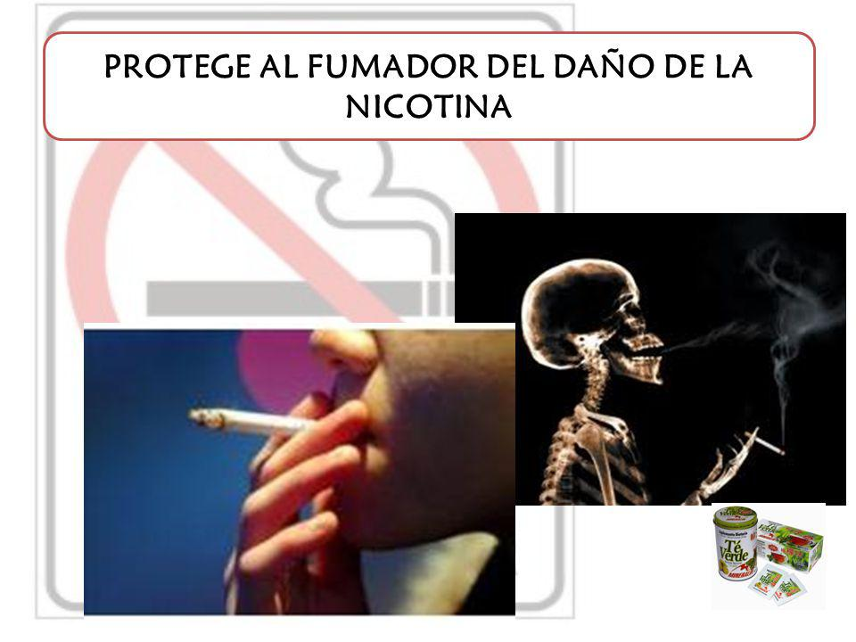 PROTEGE AL FUMADOR DEL DAÑO DE LA NICOTINA