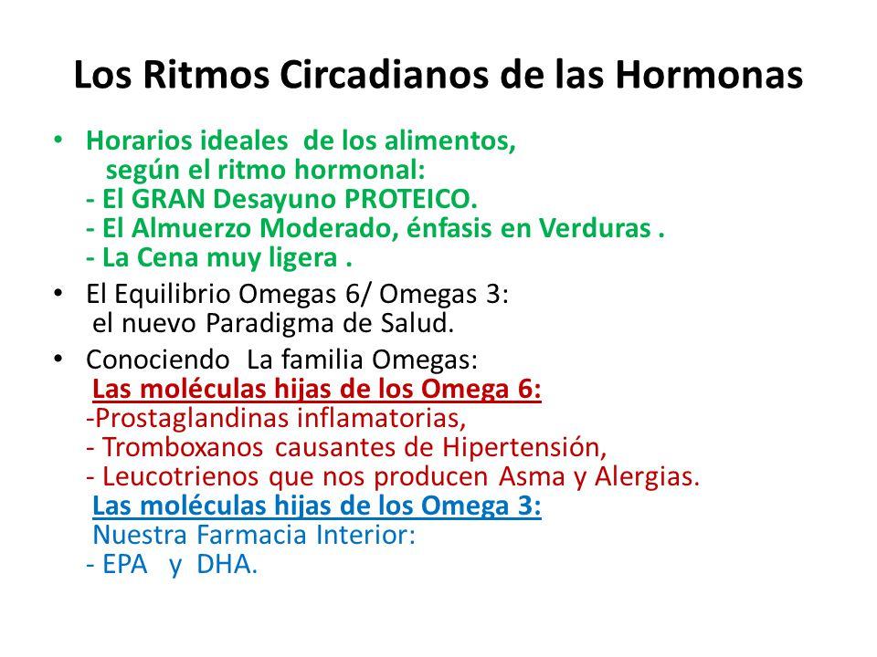 Los Ritmos Circadianos de las Hormonas