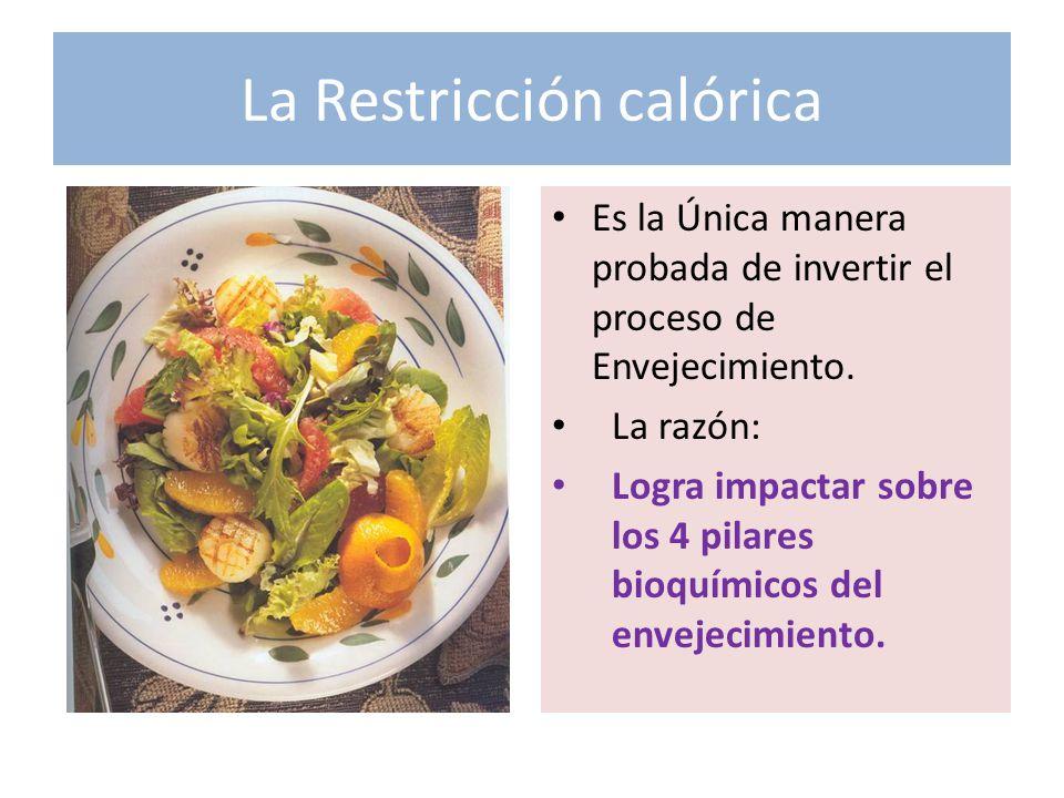 La Restricción calórica