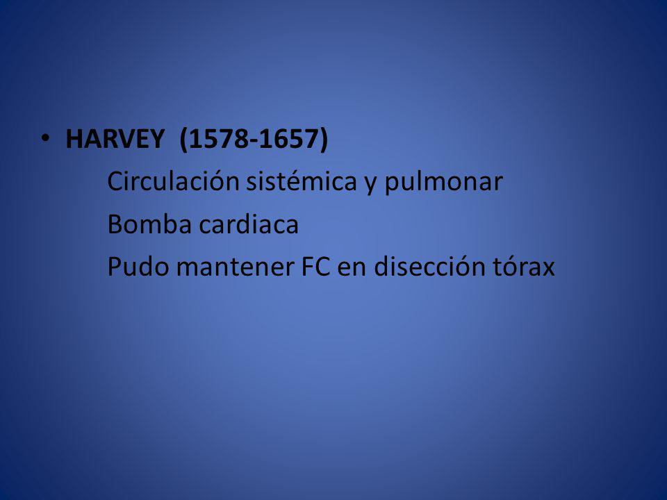 HARVEY (1578-1657) Circulación sistémica y pulmonar.