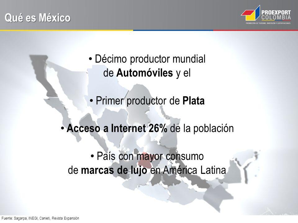 Décimo productor mundial de Automóviles y el Primer productor de Plata