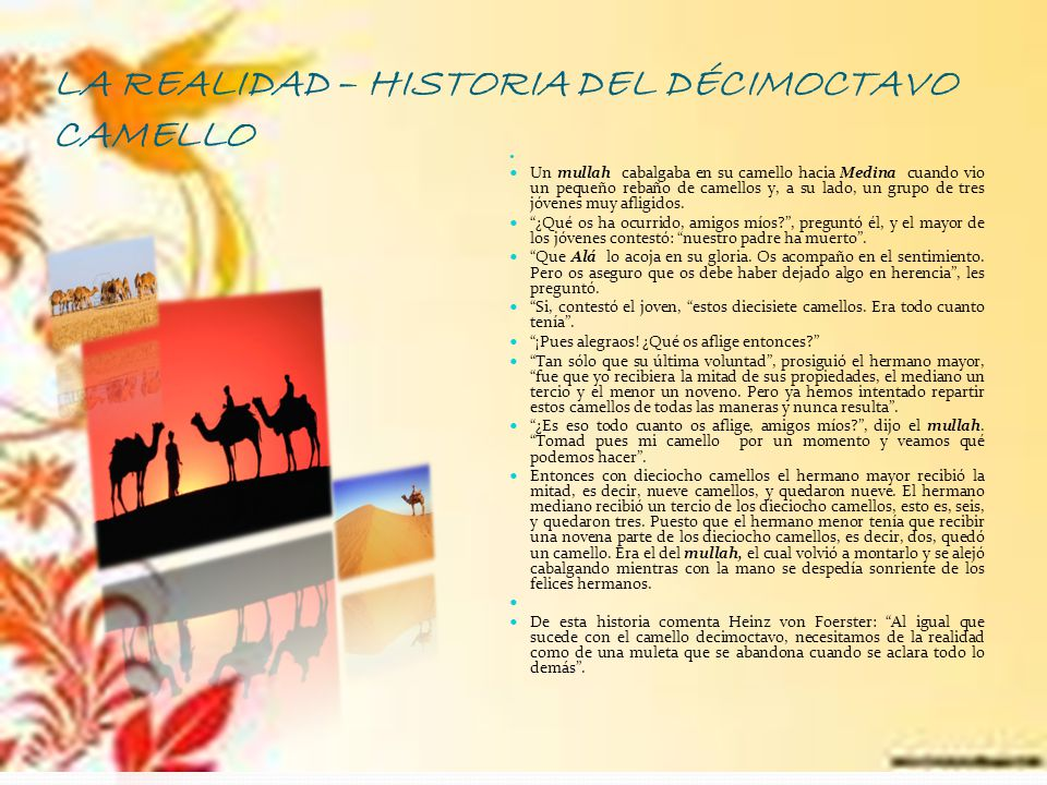 LA REALIDAD – HISTORIA DEL DÉCIMOCTAVO CAMELLO