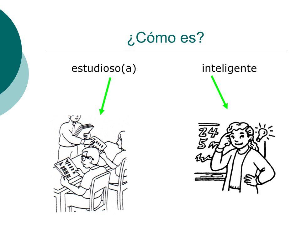 ¿Cómo es estudioso(a) inteligente