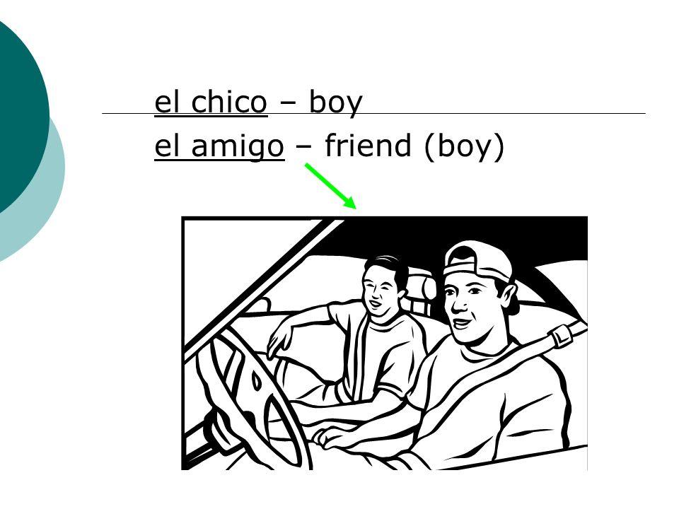 el chico – boy el amigo – friend (boy)