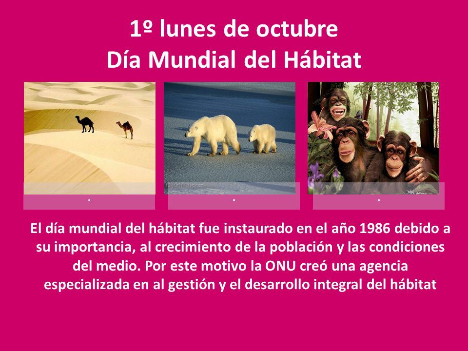 1º lunes de octubre Día Mundial del Hábitat