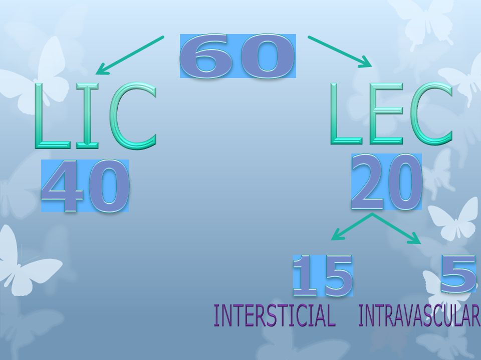 60 LIC LEC 20 40 15 5 INTERSTICIAL INTRAVASCULAR