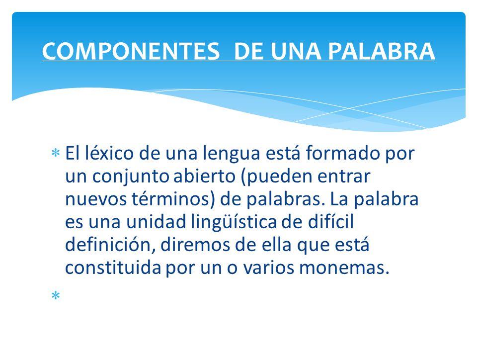 COMPONENTES DE UNA PALABRA