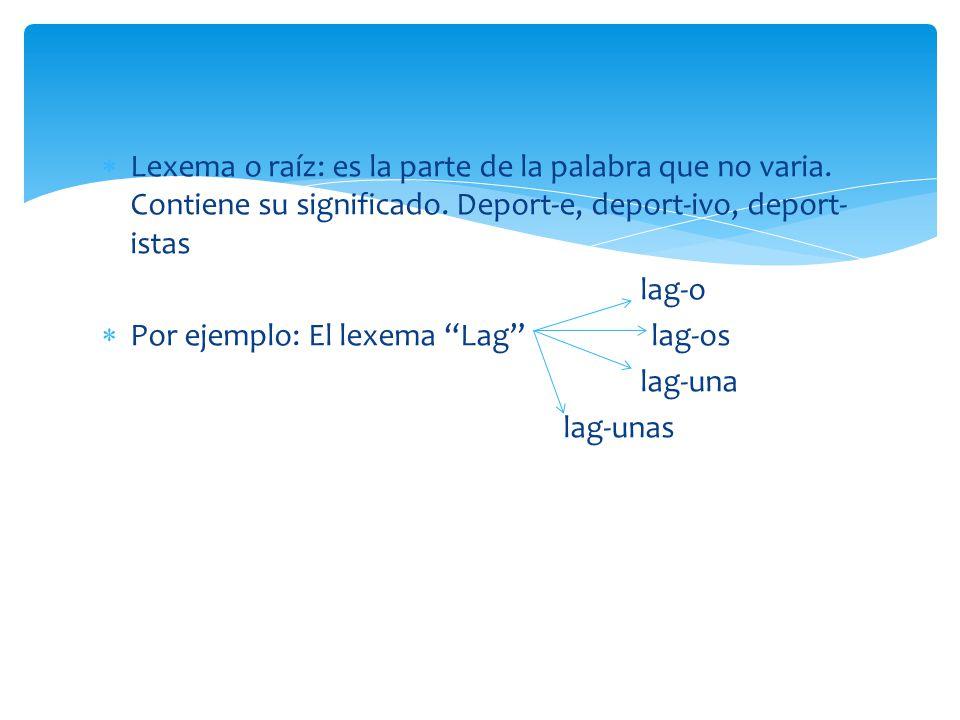 Lexema o raíz: es la parte de la palabra que no varia