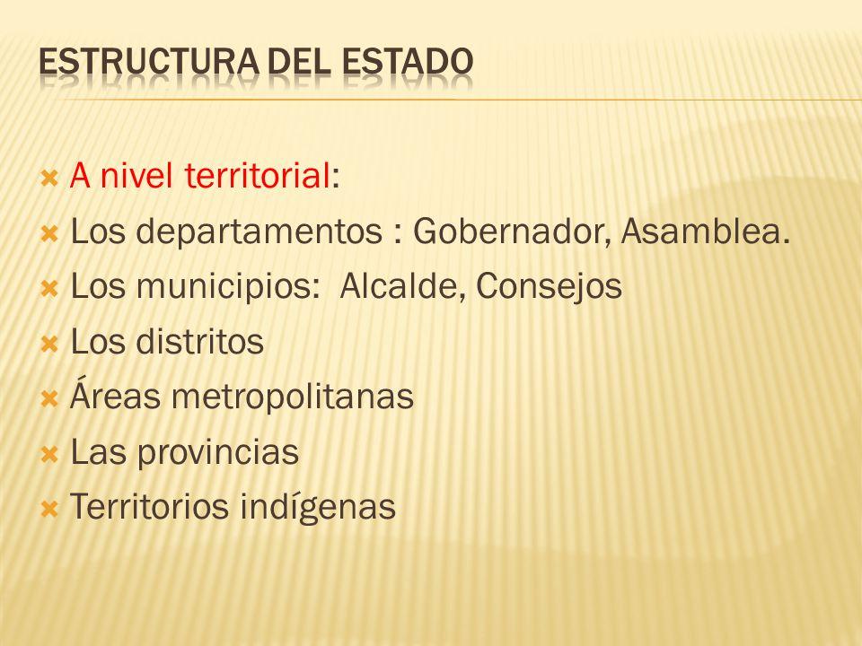 Estructura del Estado A nivel territorial: Los departamentos : Gobernador, Asamblea. Los municipios: Alcalde, Consejos.