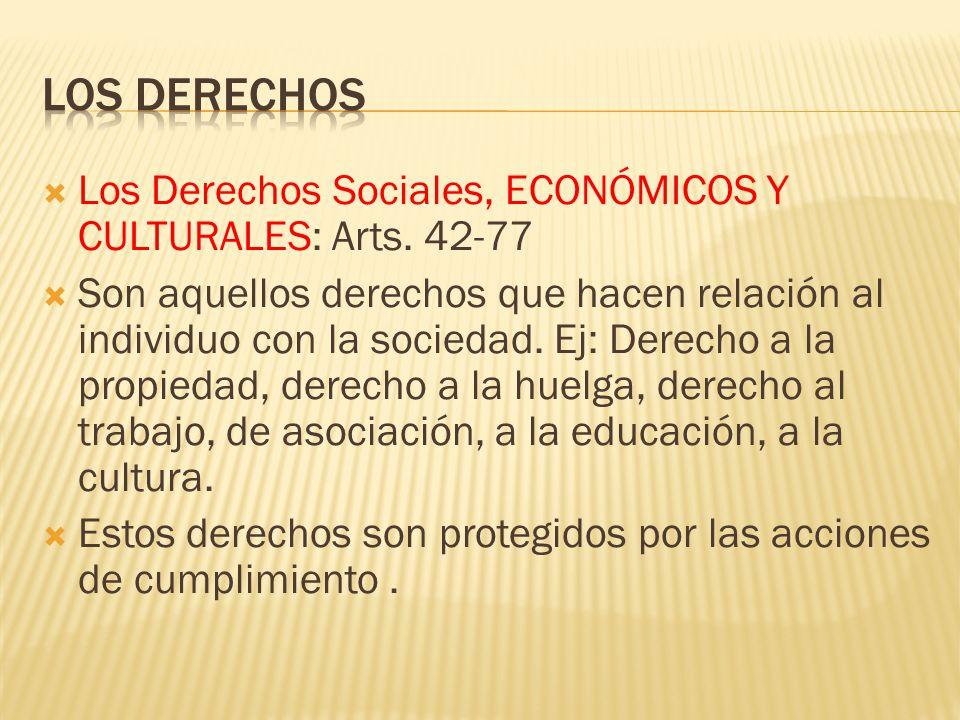 LOS DERECHOS Los Derechos Sociales, ECONÓMICOS Y CULTURALES: Arts. 42-77.