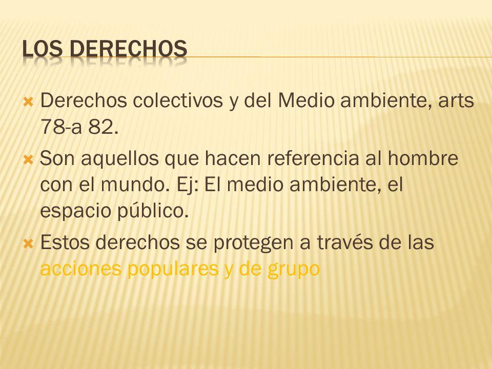LOS DERECHOS Derechos colectivos y del Medio ambiente, arts 78-a 82.