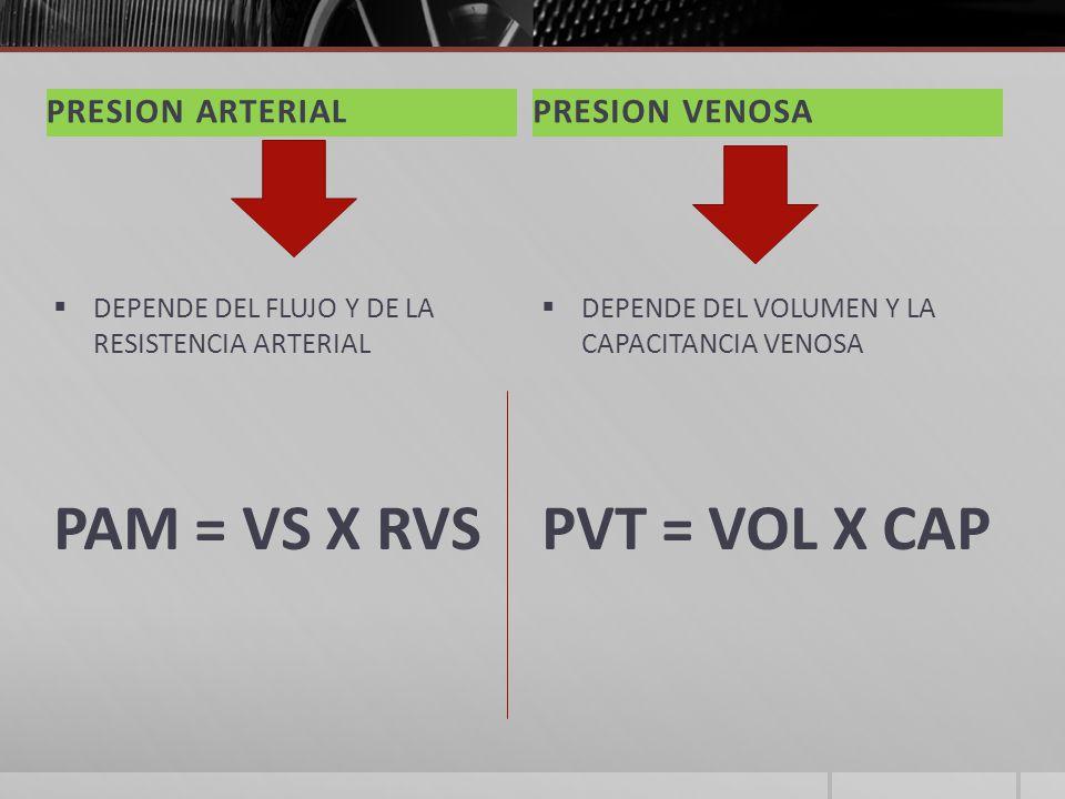 PAM = VS X RVS PVT = VOL X CAP PRESION ARTERIAL PRESION VENOSA