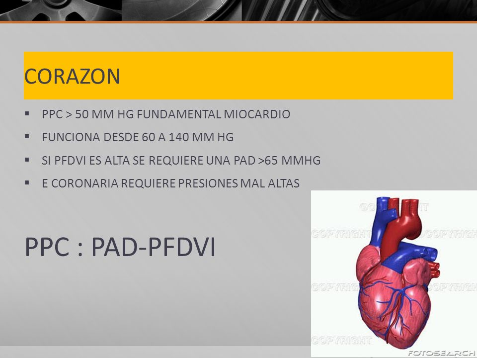 PPC : PAD-PFDVI CORAZON PPC > 50 MM HG FUNDAMENTAL MIOCARDIO