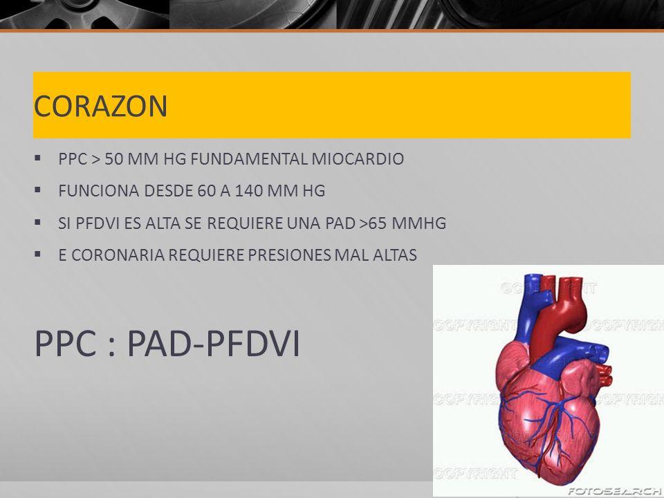 PPC : PAD-PFDVI CORAZON PPC > 50 MM HG FUNDAMENTAL MIOCARDIO