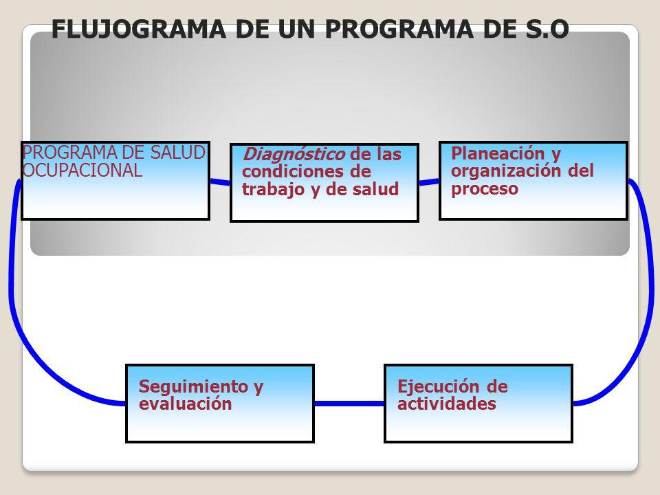 FLUJOGRAMA DE UN PROGRAMA DE S.O
