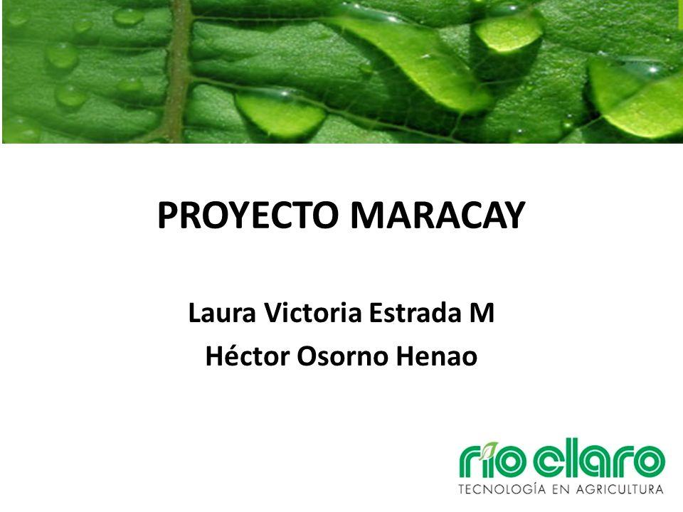 Laura Victoria Estrada M Héctor Osorno Henao