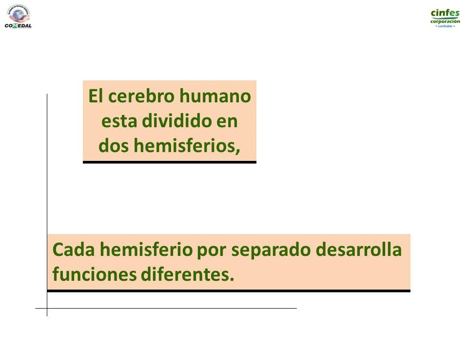 El cerebro humano esta dividido en. dos hemisferios, Cada hemisferio por separado desarrolla.