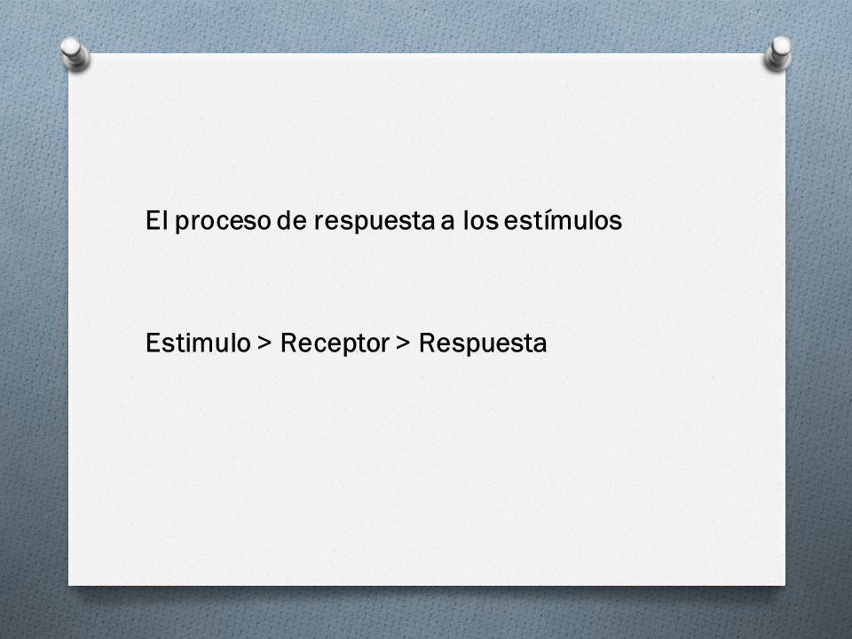 El proceso de respuesta a los estímulos Estimulo > Receptor > Respuesta
