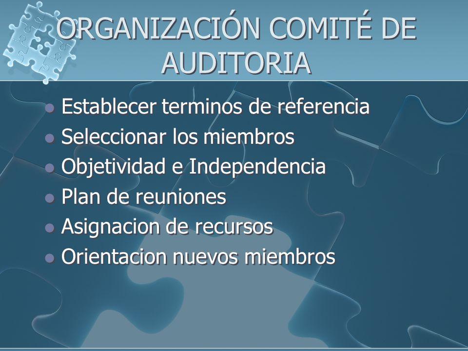 ORGANIZACIÓN COMITÉ DE AUDITORIA