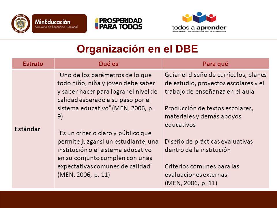 Organización en el DBE Estrato Qué es Para qué Estándar