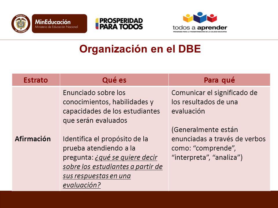 Organización en el DBE Estrato Qué es Para qué Afirmación