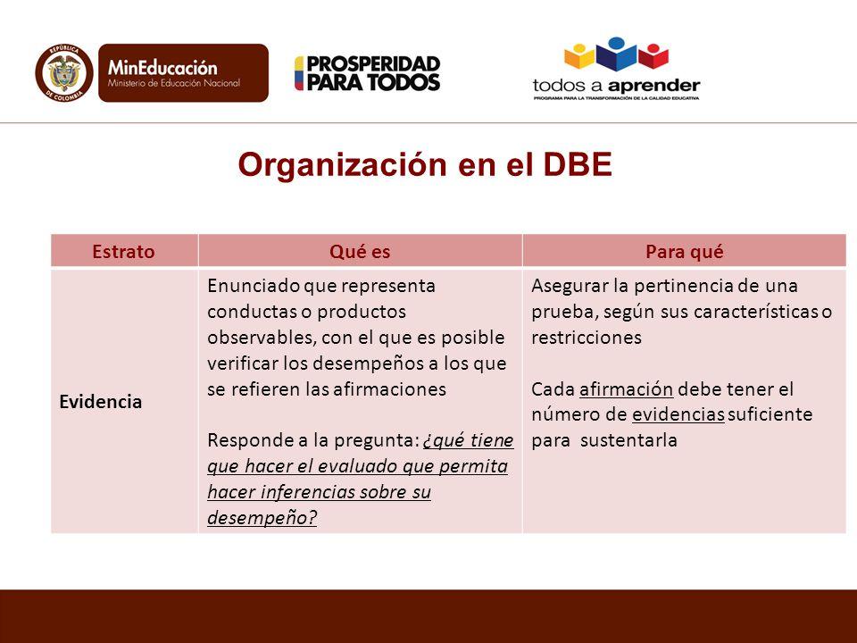 Organización en el DBE Estrato Qué es Para qué Evidencia