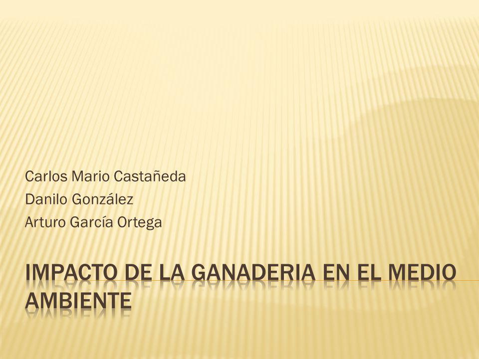 IMPACTO DE LA GANADERIA EN EL MEDIO AMBIENTE