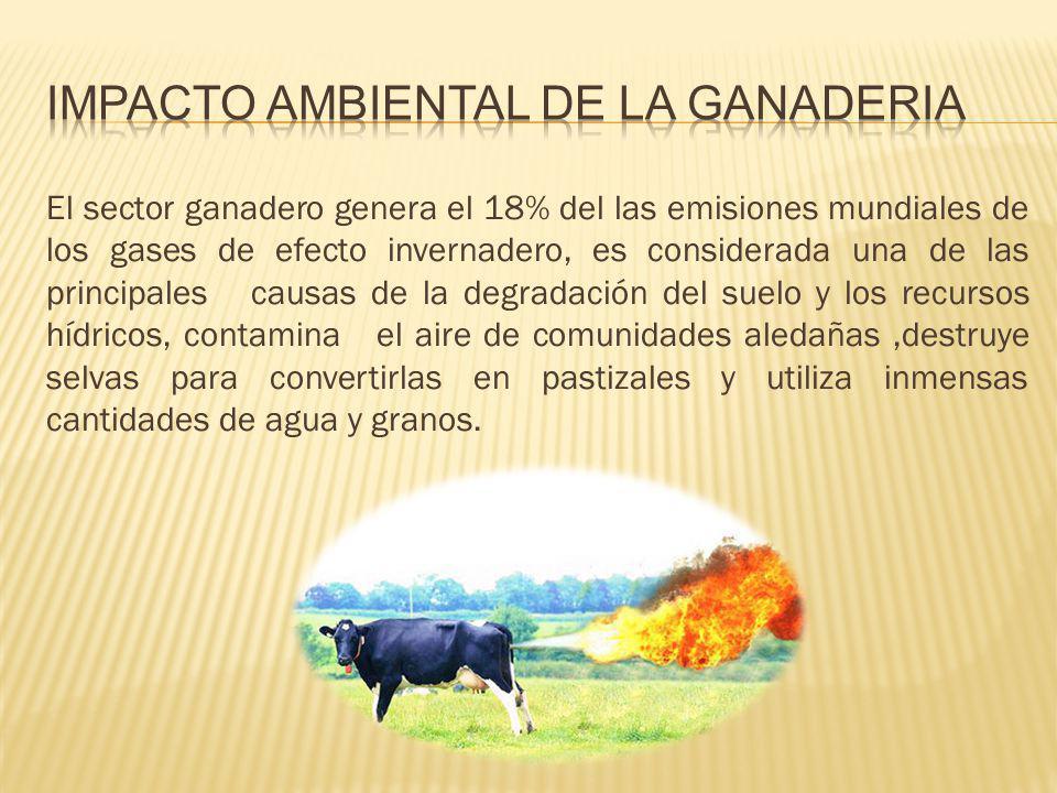 IMPACTO AMBIENTAL DE LA GANADERIA