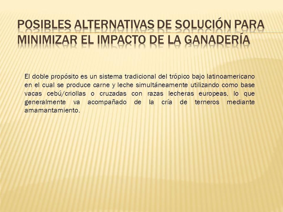 Posibles alternativas de Solución para minimizar el impacto de la ganadería