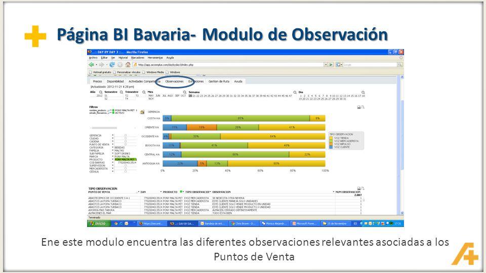 Página BI Bavaria- Modulo de Observación