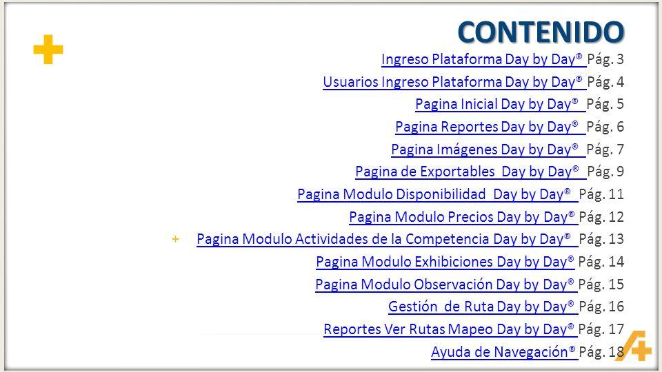 CONTENIDO Ingreso Plataforma Day by Day® Pág. 3