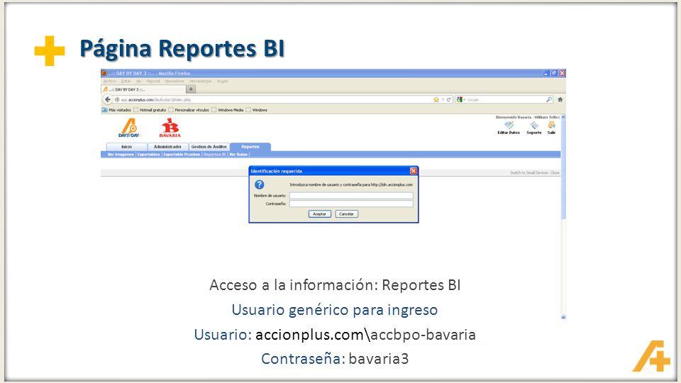 Página Reportes BI Acceso a la información: Reportes BI
