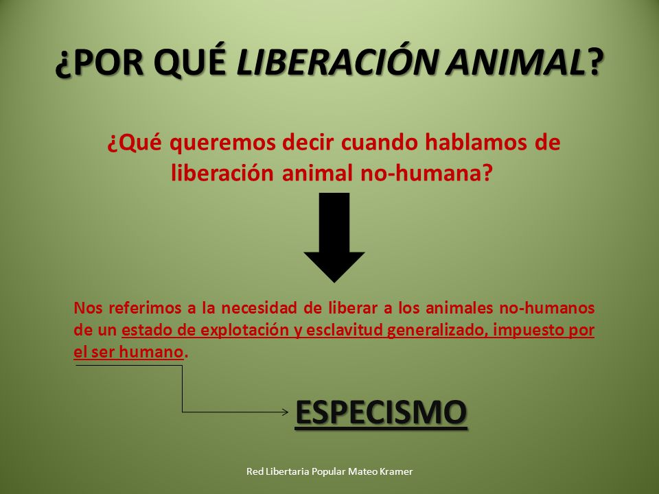 ¿POR QUÉ LIBERACIÓN ANIMAL