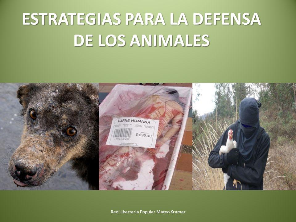 ESTRATEGIAS PARA LA DEFENSA DE LOS ANIMALES