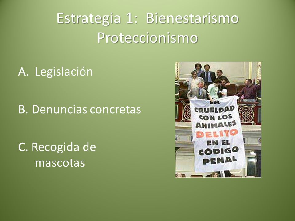Estrategia 1: Bienestarismo Proteccionismo