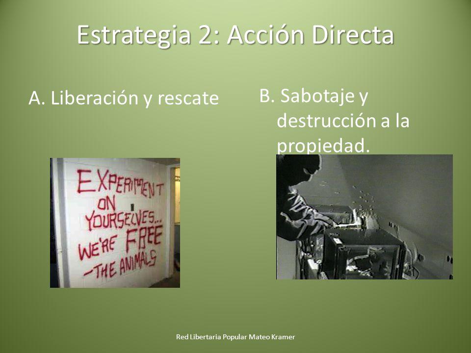 Estrategia 2: Acción Directa