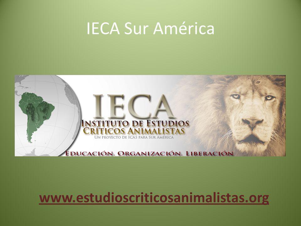 IECA Sur América www.estudioscriticosanimalistas.org